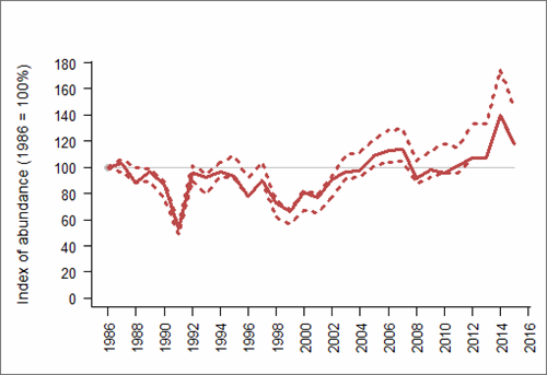 Figure 1: Trend in abundance index (solid line) of Arctic tern in England, 1986-2015 with 95% confidence limits (dotted lines). Based on SMP data; view the methods of analysis (PDF 158 kb).