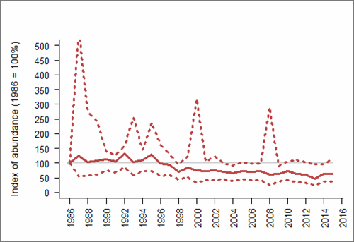 Figure 1: Trend in abundance index (solid line) of black-legged kittiwake in England, 1986-2015 with 95% confidence limits (dotted lines). Based on SMP data; view the methods of analysis (PDF 158 kb).