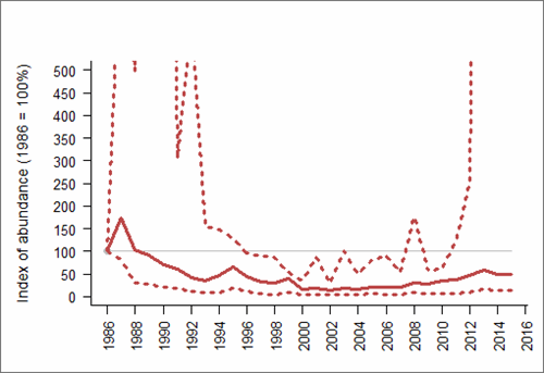 Figure 1: Trend in abundance index (solid line) of natural-nesting Herring gull in All-Ireland, 1986-2015 with 95% confidence limits (dotted lines). Based on SMP data; view the methods of analysis (PDF 158 kb).