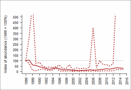 Figure 1: Trend in abundance index (solid line) of natural-nesting Herring gull in Northern Ireland, 1986-2015 with 95% confidence limits (dotted lines). Based on SMP data; view the methods of analysis (PDF 158 kb).
