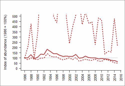 Figure 1: Trend in abundance index (solid line) of natural-nesting lesser black-backed gull in Wales, 1986-2015 with 95% confidence limits (dotted lines). Based on SMP data; view the methods of analysis (PDF 158 kb).
