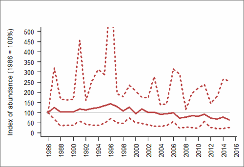 Figure 1: Trend in abundance index (solid line) of northern fulmar in Scotland, 1986-2015 with 95% confidence limits (dotted lines; drawing of upper limit restricted to preserve detail in the abundance index). Based on SMP data; view the methods of analysis (PDF 158 kb).