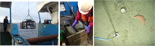 Drop-camera deployment on the MRV Scotia; box core sample processing; drop-camera seabed image from within Geikie Slide and the Hebridean Slope NCMPA. Left and middle images © JNCC 2016, right hand image © JNCC/MSS 2016