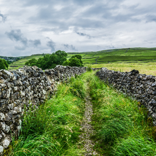 UK countryside featuring dry stone wall