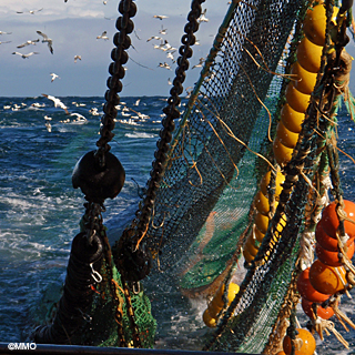 Fishing boat at sea ©MMO