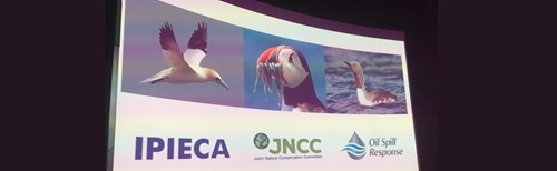 Image; Workshop slide with partners logos included (Oil Spill Response and IPIECA alongside JNCC)