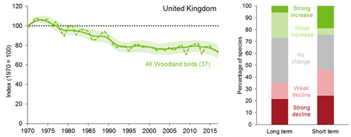 A line graph showing how the trend for the UK woodland bird index has changed between 1970 and 2017. The smoothed index shows significant decline between 1970 and 1995. Since 1995 the index has been more stable. The unsmoothed index shows considerable year-on-year variation.    A bar chart showing the percentage of individual species within the UK woodland bird index that have shown a statistically significant increase, a statistically significant decrease or no statistically significant change over both the long term (since 1970) and short term (2011 to 2016).