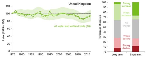 A line graph showing how the trend for the UK water and wetland bird index has changed between 1975 and 2017. The smoothed index has remained fairly stable since 1975.  The unsmoothed index shows considerable year-on-year variation. A bar chart showing the percentage of individual species within the UK water and wetland bird index that have shown a statistically significant increase, a statistically significant decrease or no statistically significant change over both the long term (since 1975) and short term (2011 to 2016).