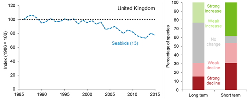 A line graph showing how the unsmoothed trend for the UK seabird index has changed between 1986 and 2015. There is no smoothed trend available for seabirds. The trend for seabirds shows a fairly stable pattern from 1986 until the mid-2000s and from then on seabird numbers started to decline. A bar chart showing the percentage of individual species within the UK seabird index that have shown a statistically significant increase, a statistically significant decrease or no statistically significant change over both the long term (since 1986) and short term (2009 to 2014).