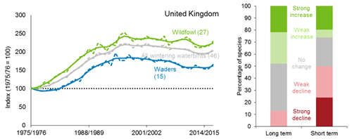A line graph showing how the trend for the UK wintering waterbirds index has changed between 1975/76 and 2016/17. The smoothed trend shows considerable increase for UK wintering waterbirds since 1975/76. The unsmoothed trend shows year-on-year variation.  A bar chart showing the percentage of individual species within the UK wintering waterbirds index that have shown a statistically significant increase, a statistically significant decrease or no statistically significant change over both the long term (since 1975/76) and short term (2010/11 to 2015/16).