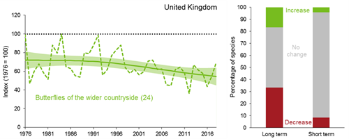 A line graph showing how the trend for the UK butterflies in the wider countryside index has changed between 1976 and 2018. The smoothed index remained relatively stable between 1976 and the early 1990s but has fallen steadily since then. The unsmoothed index shows considerable year-on-year variation. A 100% stacked bar chart showing the percentage of individual species within the UK butterflies of the wider countryside index that have shown a statistically significant increase, a statistically significant decrease or no statistically significant change over both the long term (since 1976) and short term (latest 5 years).