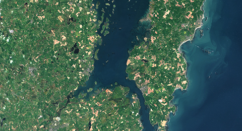 A satellite image of Strangford Lough in Northern Ireland, showing the lough and surrounding land to the East, West and South. Image © Sentinel-2 analysis ready data.