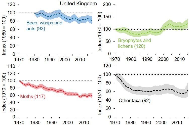 Four line graphs showing changes to the index of distribution of priority species in the UK, by taxonomic group. The bees, wasps and ants group experienced an overall decline, with an index value in 2018, 82% of that in 1980. These are counterbalanced by increases in bryophytes and lichens, which had an index value of 124 in 2015. The moths have undergone the most dramatic decline with an index value in the final year 59% of the value in 1970.