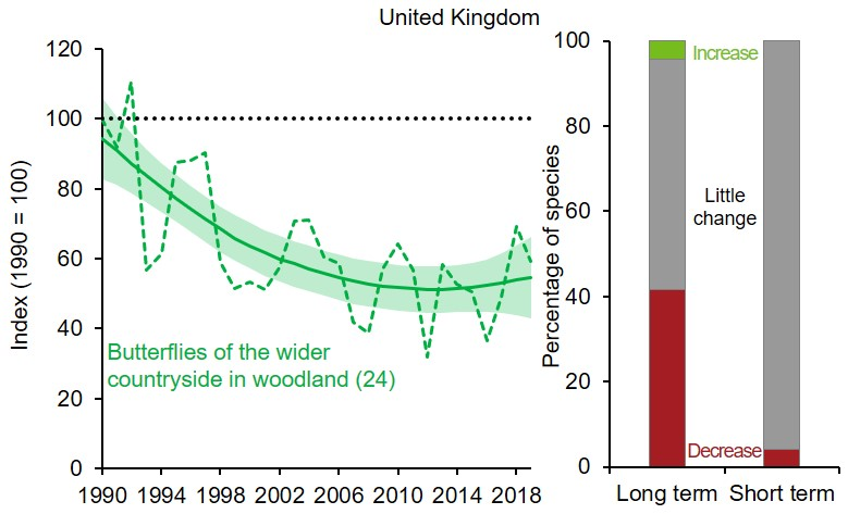 Left part is a line graph showing changes to the index for UK butterflies of the wider countryside in woodland. Smoothed index fell steadily between 1990 and 1998 but has since levelled out. Unsmoothed index has shown year-on-year variation. Right part is two 100% stacked bar charts showing percentage of species within the index that have shown statistically significant increase, decrease or no significant change (little change) over the long term (since 1990) and short term (latest 5 years).